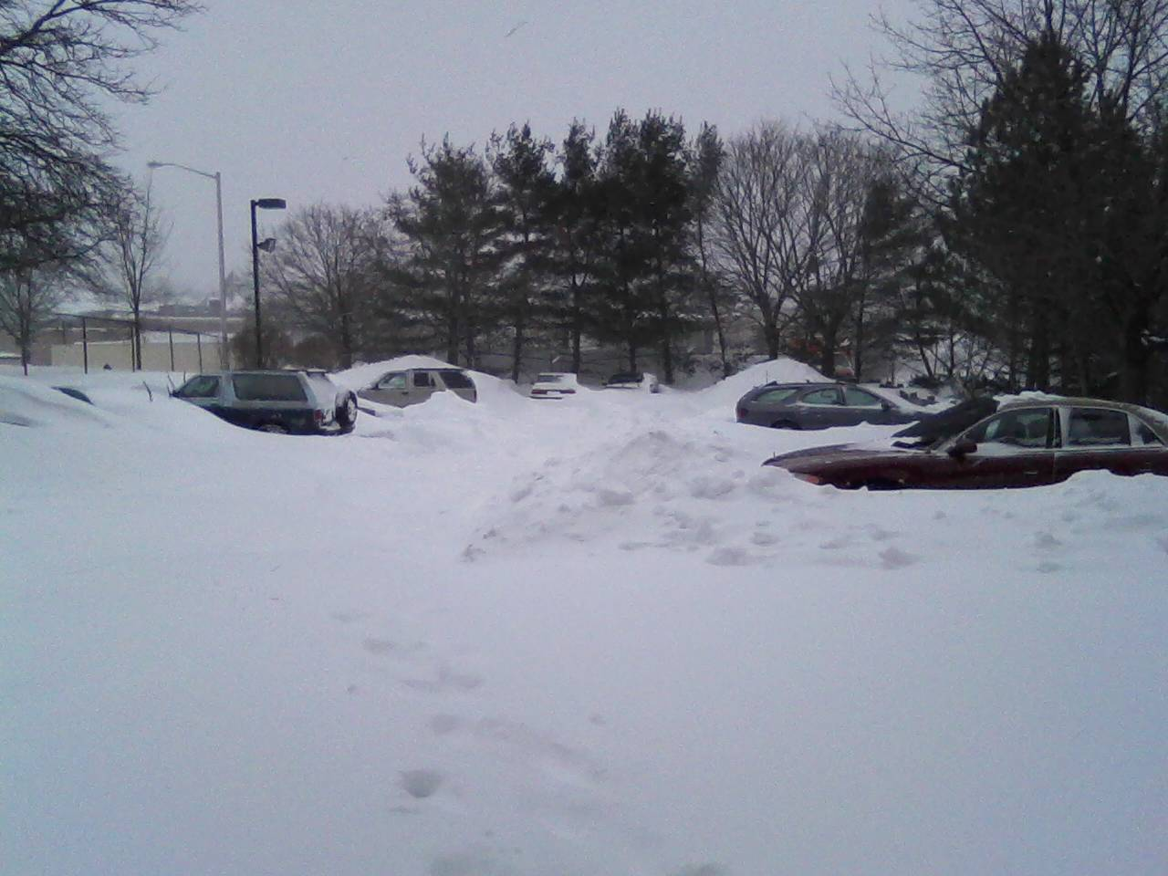 blizzards a pondering mind