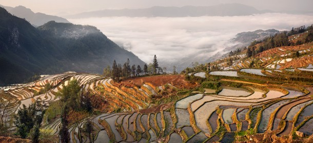 In China, rice terraces high up on a mountain side.