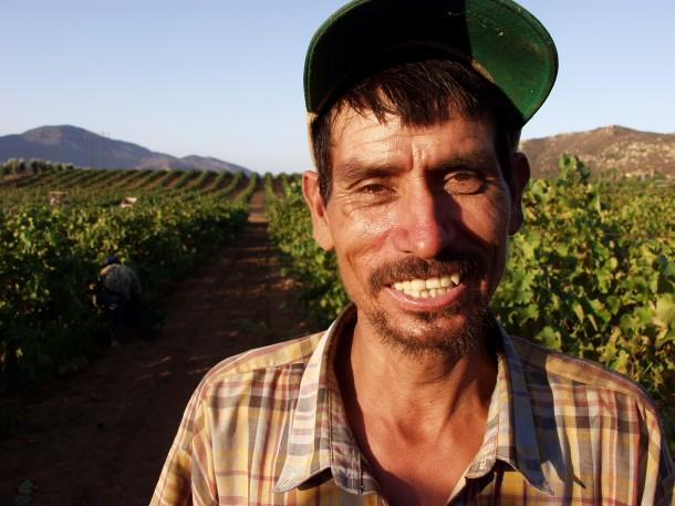 A poor grape worker in Baja California, Mexico