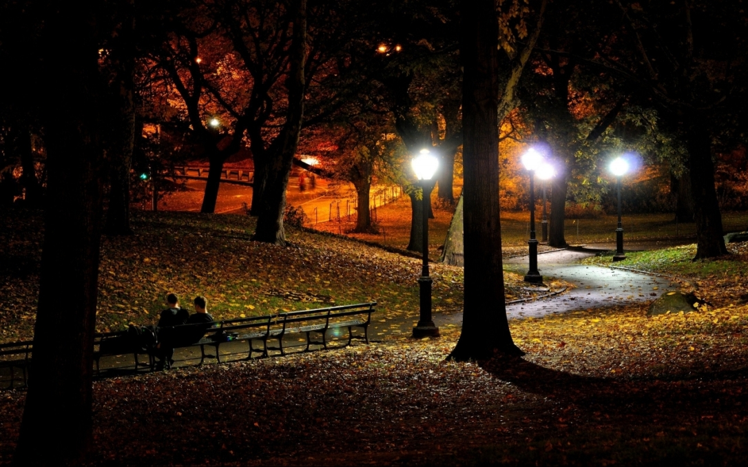 Central Park, New York at night.