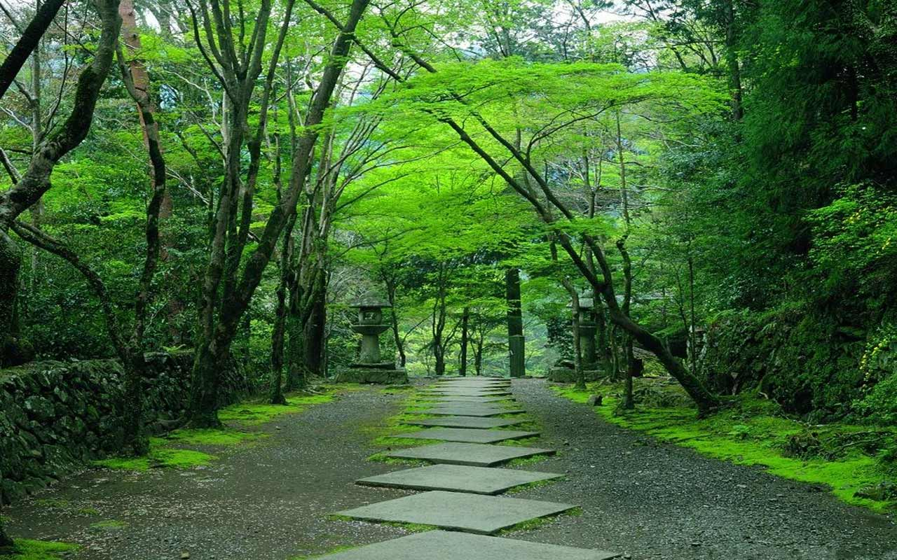 Consider, kyoto japanese garden quickly thought))))
