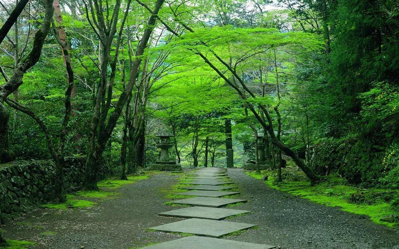 japanese garden kyoto - photo #11