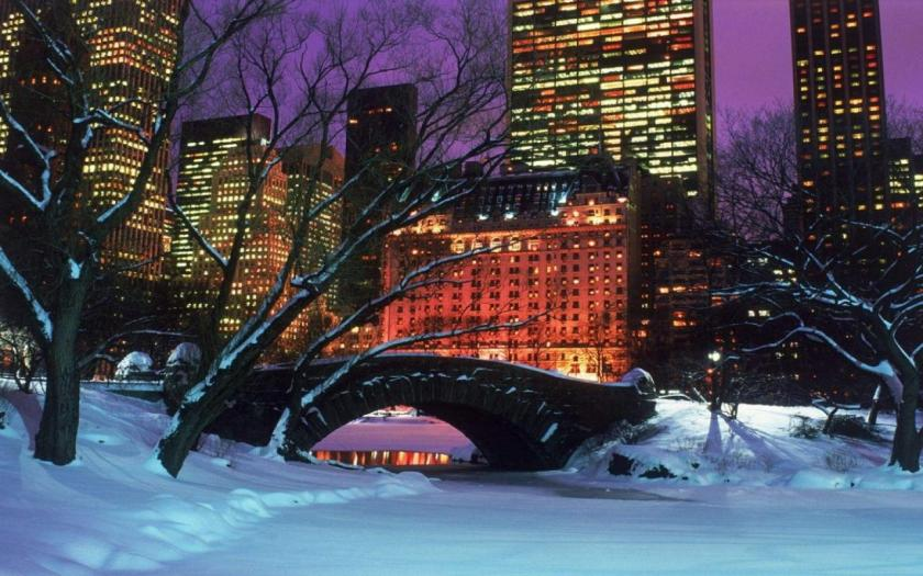 Central Park, New York City in Winter.
