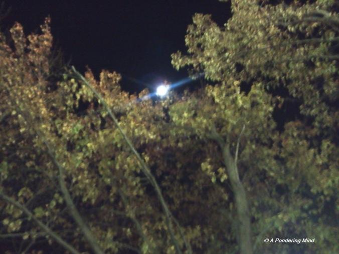 Moon 11-13-13