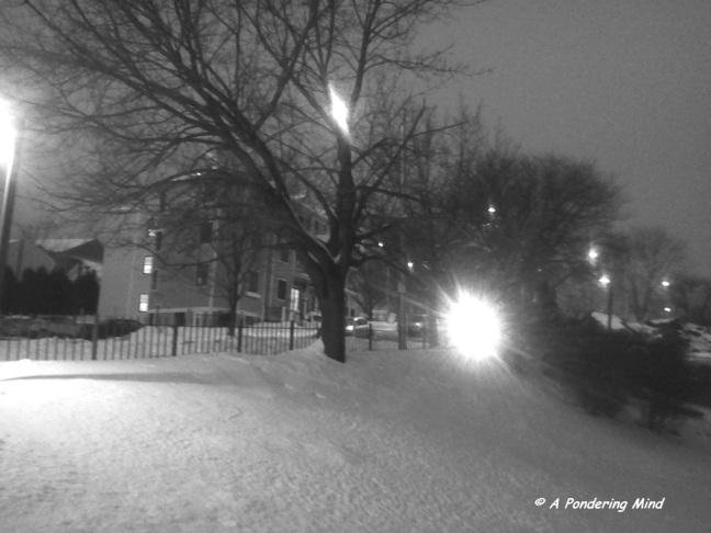 Snow 2 December 19 2013