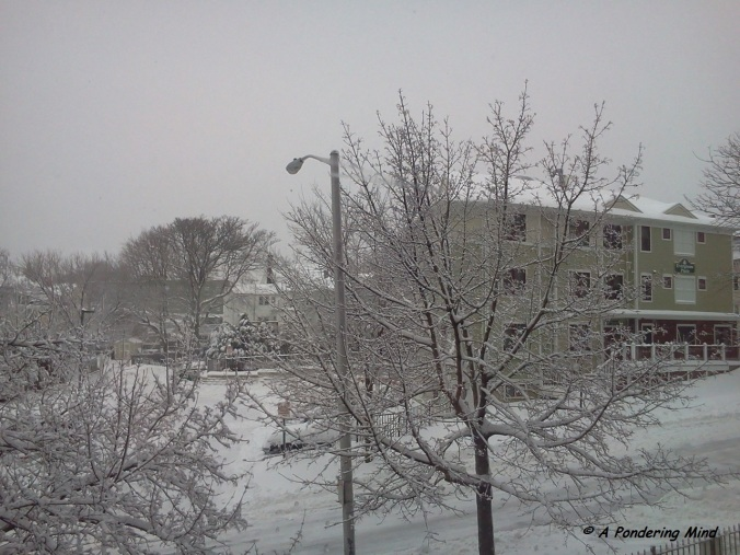 Snow December 15 2013