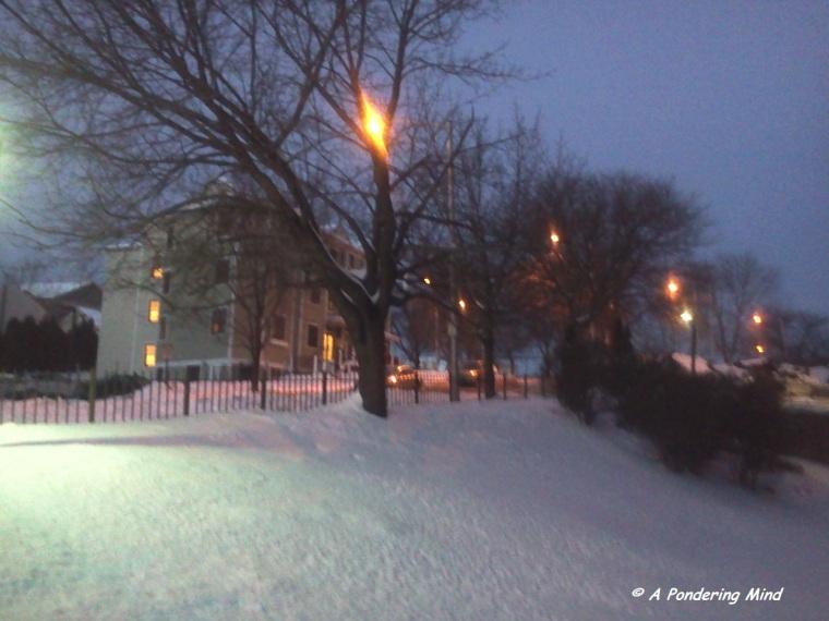 Snow December 19 2013