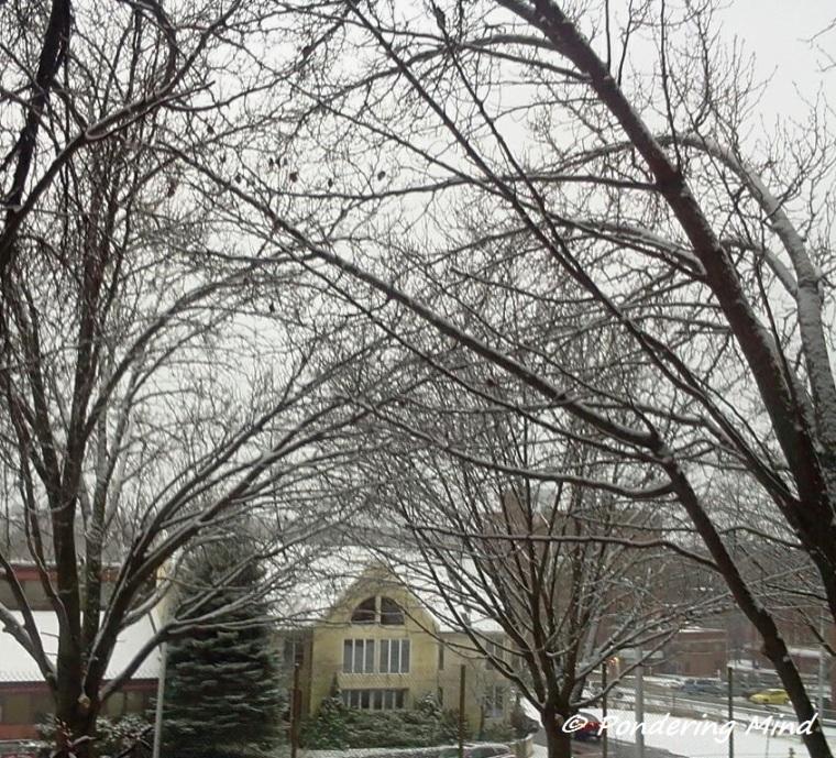 Snow December 9 2013
