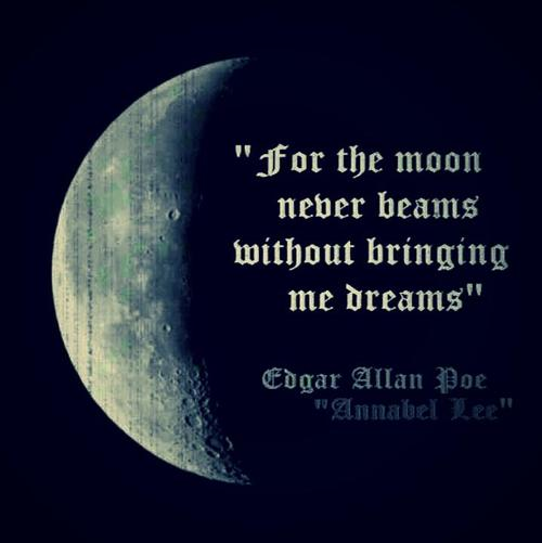 For-the-moon-never