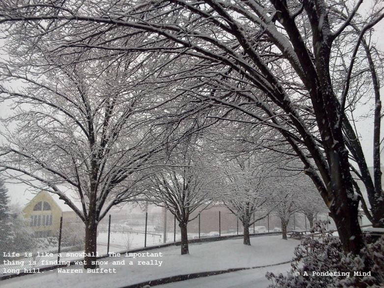 Snow January 18 2014