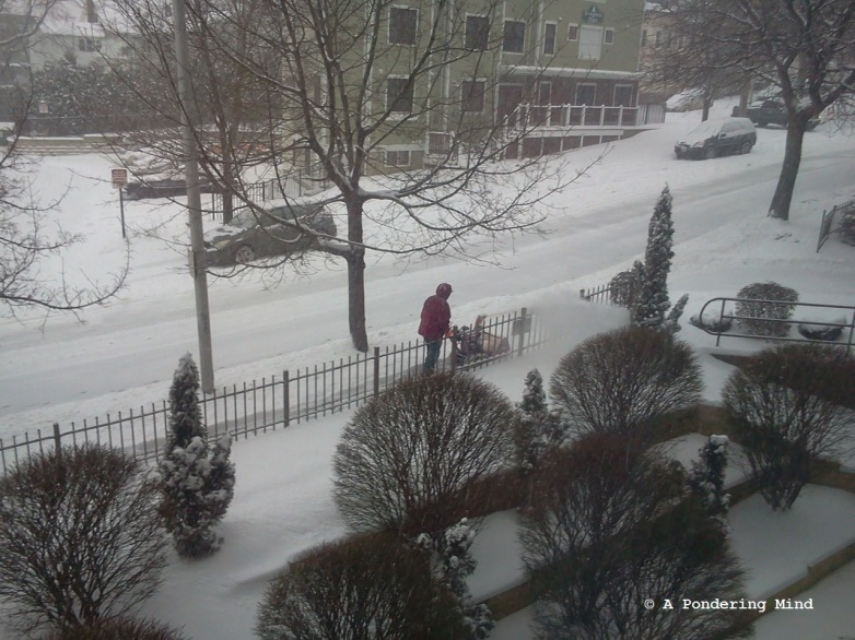 Snow storm, February 5, 2014