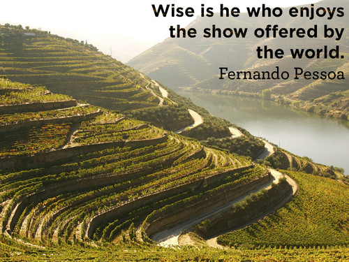 Wise-is-he-who-enjoys