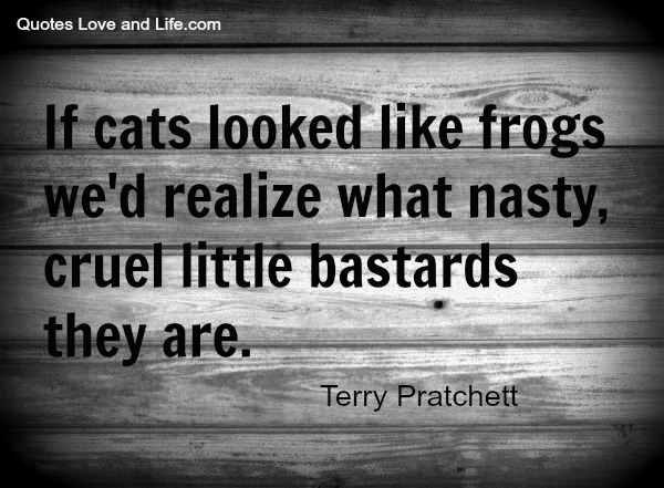 If-cats-looked-like-frogs-wed-realize