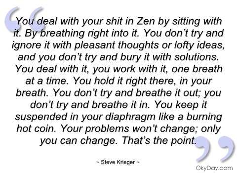 you-deal-with-your-shit-in-zen-by-sitting-steve-krieger