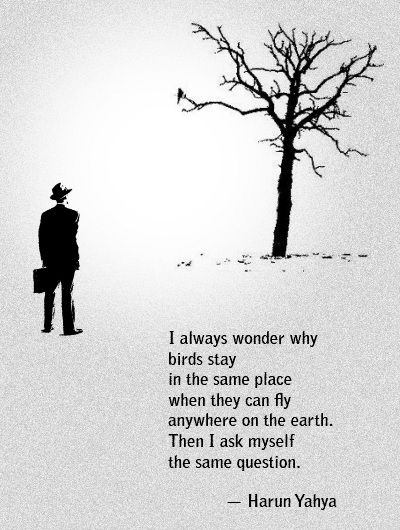 Harun-Yahya-Fly-anywhere-on-earth