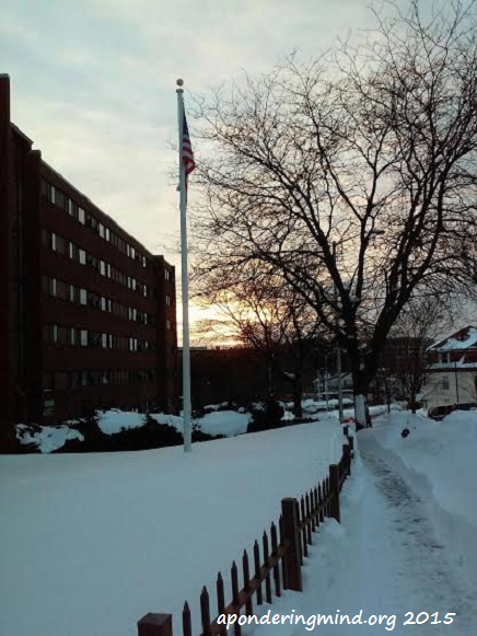 February 4 2015