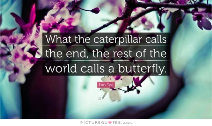 what-the-caterpillar-calls-the-end-the-rest-of-the-world-calls-a-butterfly-quote-1