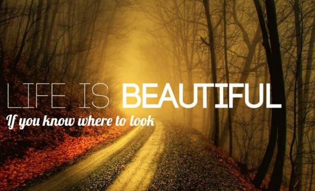 Life-is-beautiful3-640x388