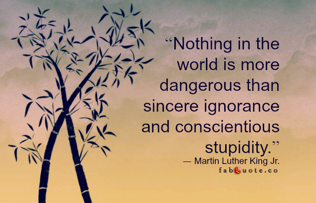 Martin-Luther-King-Jr.-Ignorance-and-Stupidity
