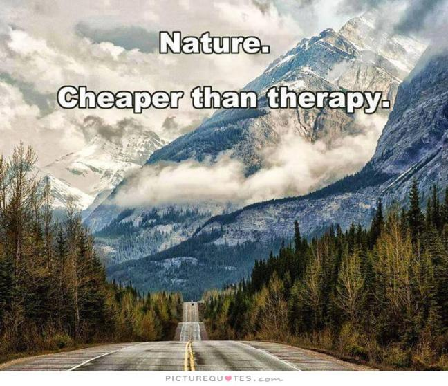 nature-cheaper-than-therapy-quote-1
