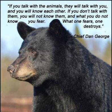 animal-quote-1